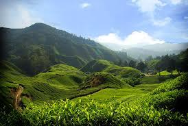 berbagai+tempat+wisata+indonesia+yang+mendunia.jpeg