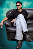 Prabhas Birth Day Special Photo Shoot stills-thumbnail-6