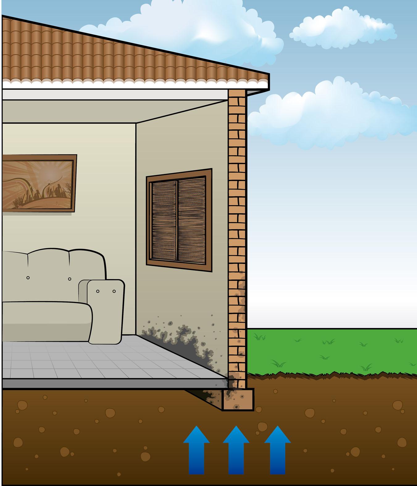 """Impermeabilização: Os mitos do """"como acabar com o mofo dentro de  #0076BF 1351 1575"""