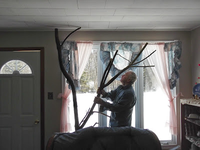 man sets cat tree