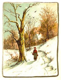 stock winter image