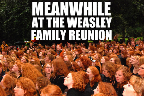 Meanwhile At The Weasley Family Reunion