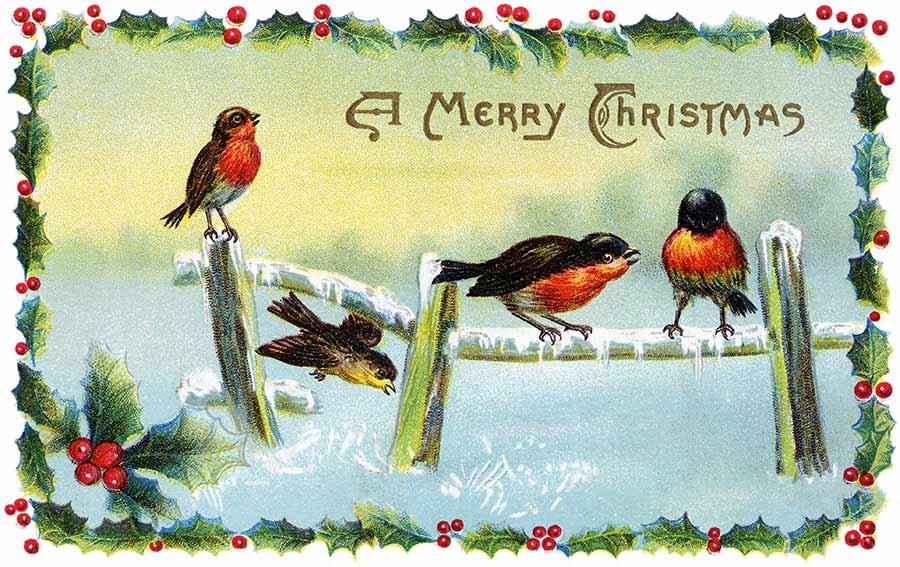 Cindy Adkins...Art, Books, Tea: Vintage Christmas Cards