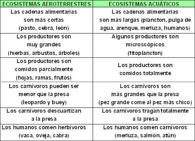 ecosistemas depredadores herbívoros carnívoros productores carroñeros