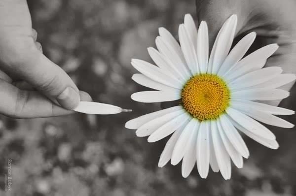 """""""Com liberdade, livros, flores e Lua, quem não seria inteiramente feliz?""""  (Oscar Wilde)"""