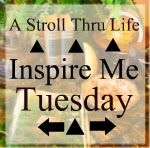 http://www.astrollthrulife.net/2013/10/188th-inspire-me-tuesday.html