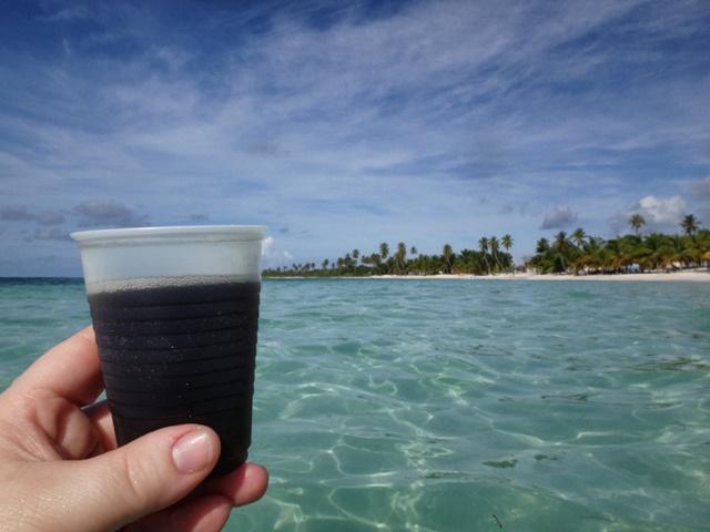 Brindando en el paraíso de Isla Saona