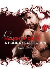 Twelve Naughty Days of Christmas