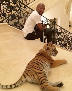 Ent News : Floyd Mayweather reacts to Chrissy Teigen's tweet saying she hopes his pet tiger eats him [ Photo ]