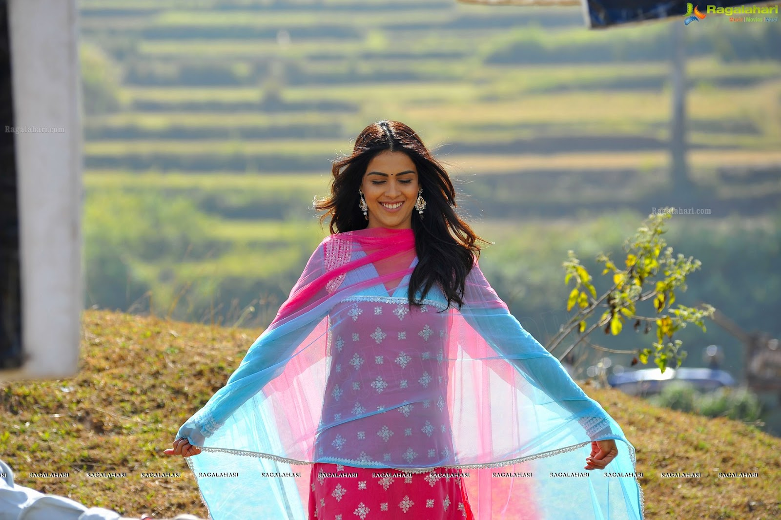 genelia desouza: genelia d'souza hd wallpapers