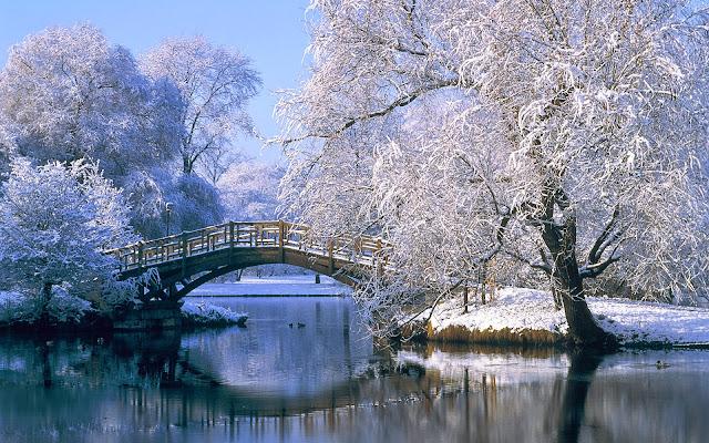 Hình nền mùa đông đẹp - Ảnh 13