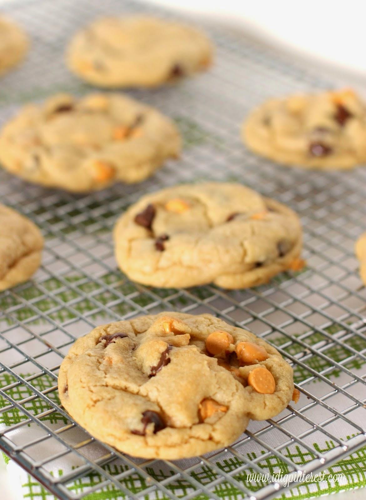 Chewy_Good_Butterscotch_Chip_Cookies.jpg