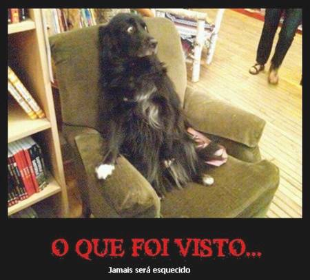 Desmotivacionais ,Humor ,Cachorros , OGatoNinja.blogspot.com
