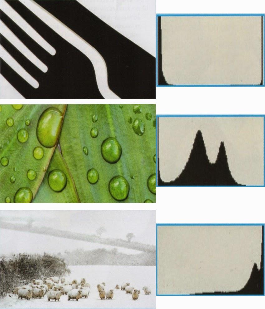 Cara membaca histogram pada fotografi digital