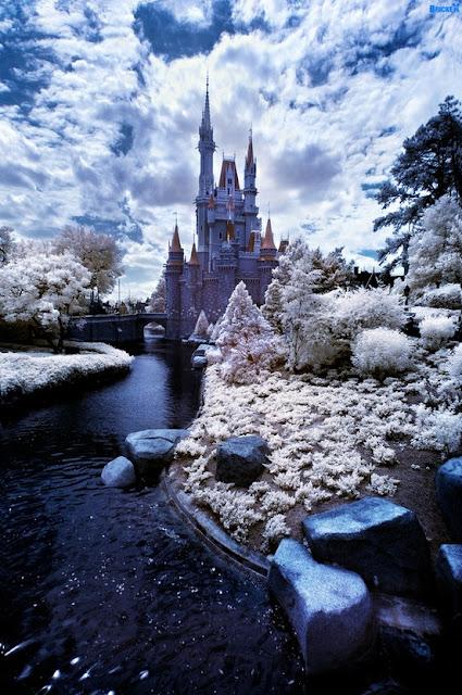 DISNEY - EN VACACIONES: Disney Parks