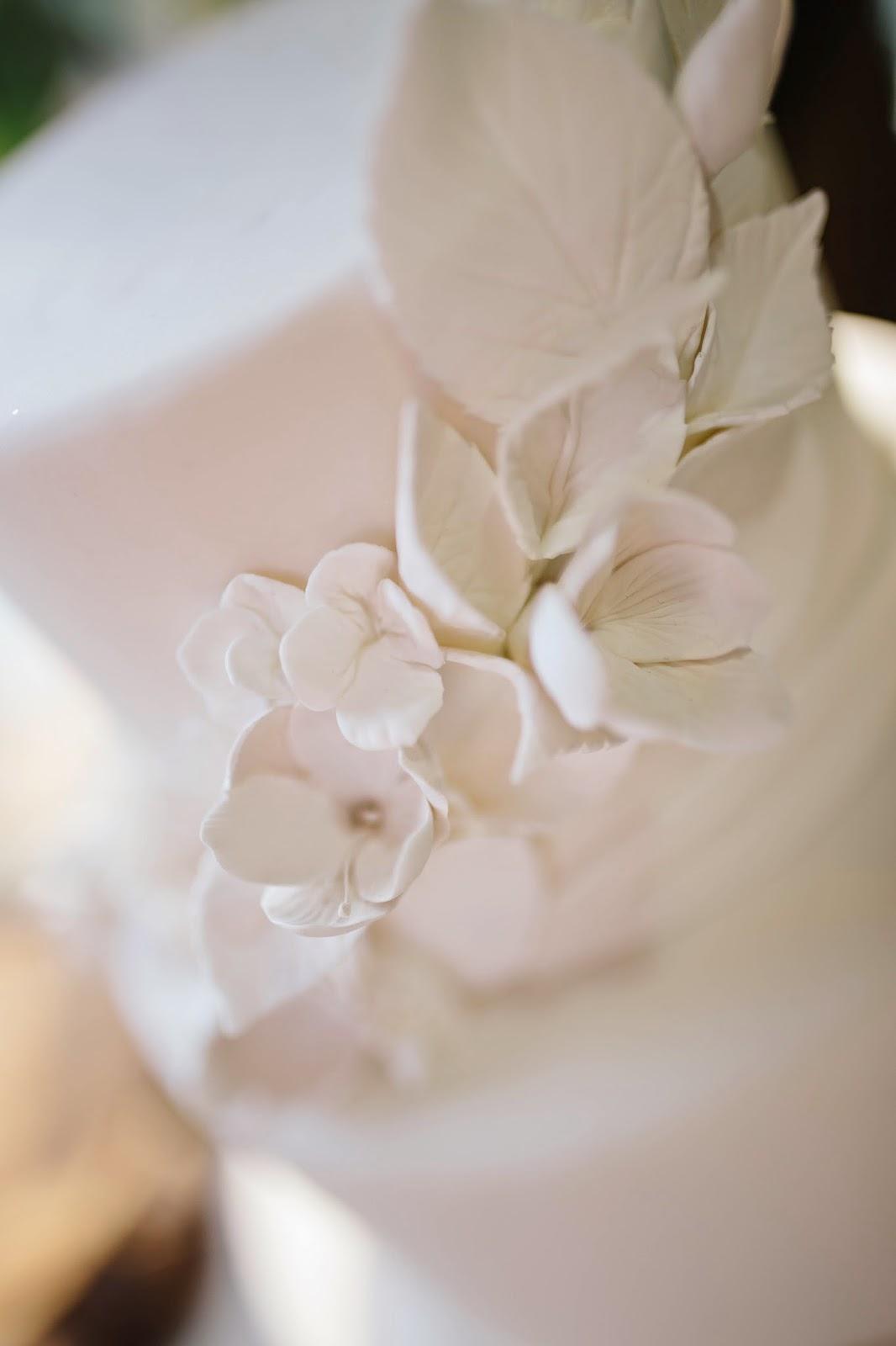 Main line wedding events anthropologie wedding registry allie white on white wedding cake details photo junglespirit Image collections