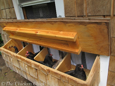 Nest boxes sharing is normal and expected, but 3-4 hens per nest is a recipe for broken eggs, egg-eating and pecking injuries. The stress of competing for a nest is also likely to put the kibosh on egg-laying for weeks