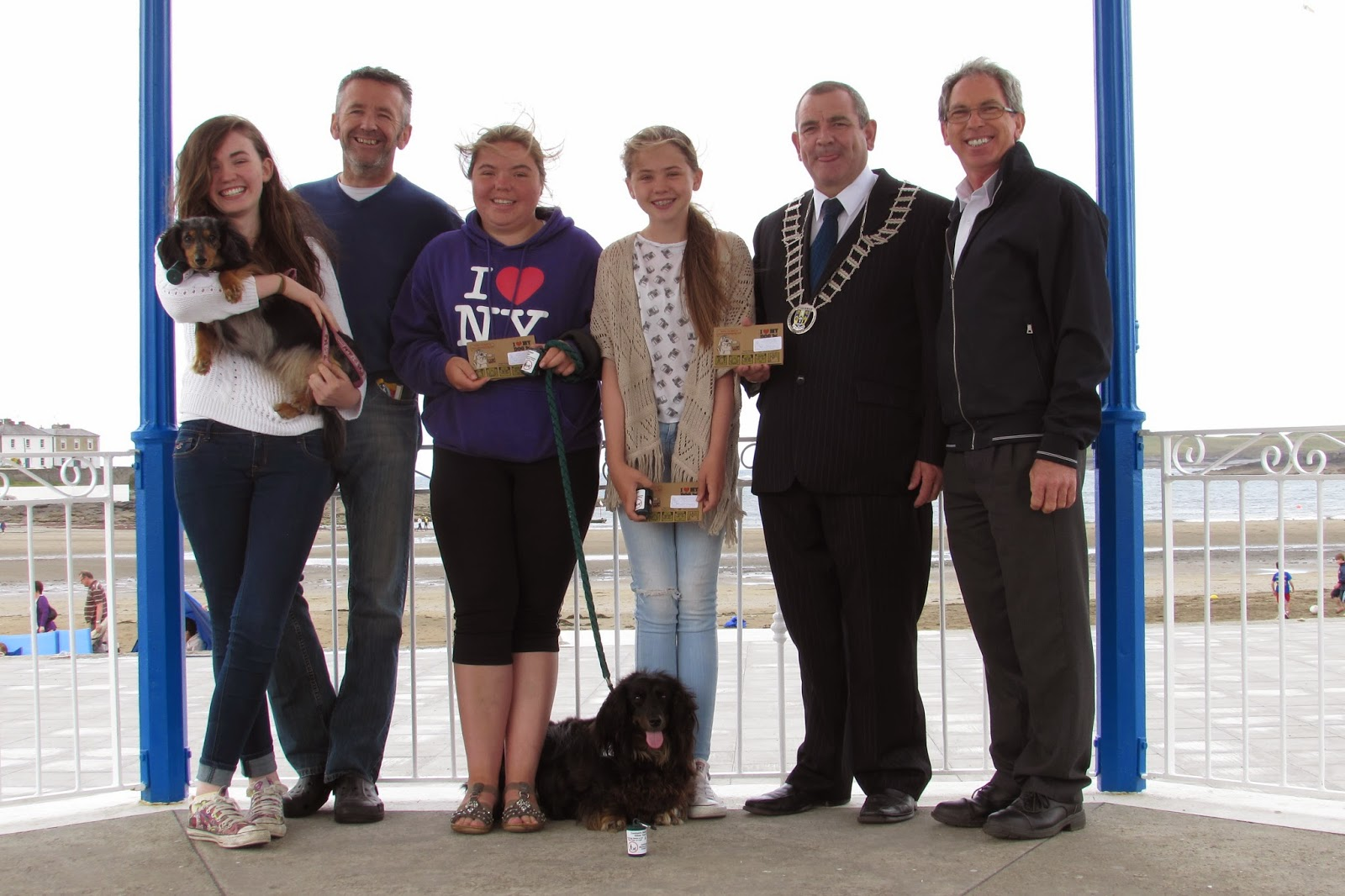 Audio devices to help curb dog fouling at Clare beaches