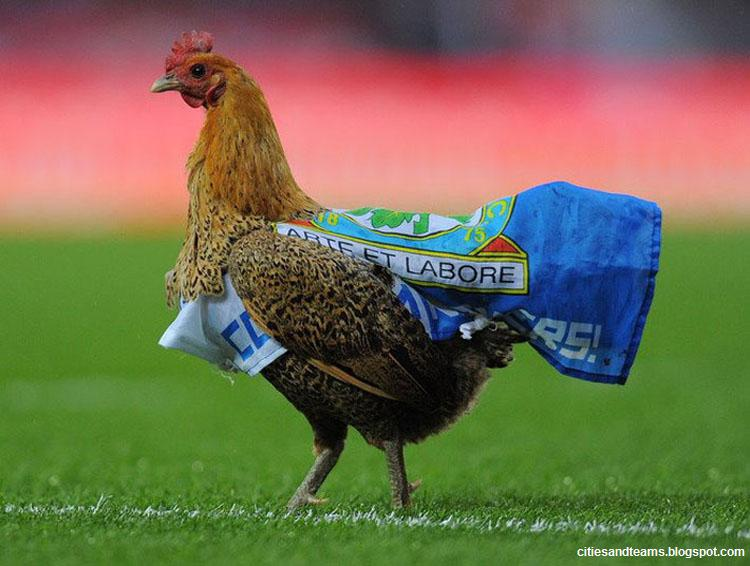 Blackburn Rovers Fans Protest Venkey With Chicken At Ewood