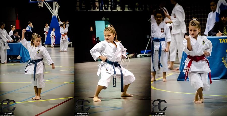 Karate shito ryu asturias el gimnasio arenas en el trofeo for Gimnasio zona centro