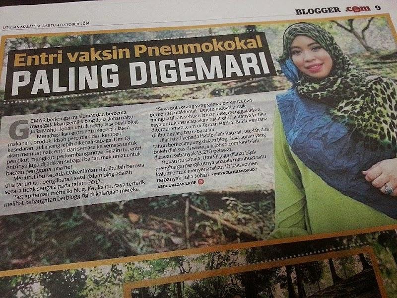 Blogger Pilihan Utusan Malaysia - Julia Johari