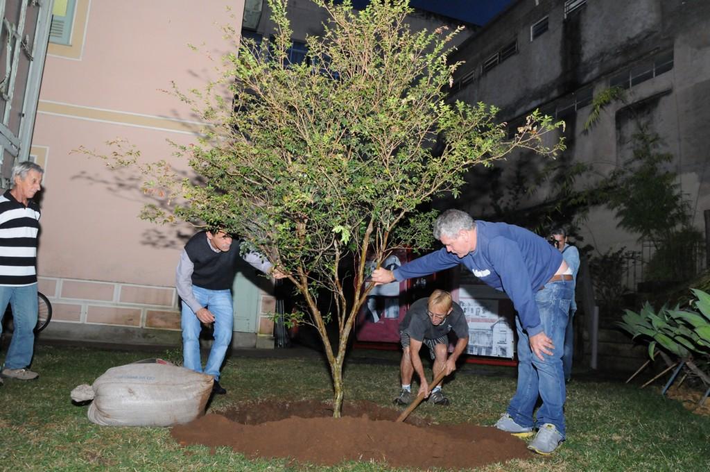 A árvore foi plantada em homenagem ao escalador, que trabalhou na Secretaria de Cultura
