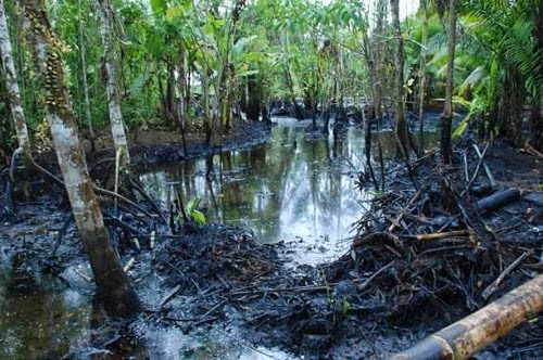 Peru Declares State Of Emergency After Oil Spills From Pipeline Leaks In The Amazon Rainforest