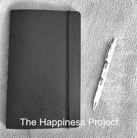 Happiness Project Lit Nerd