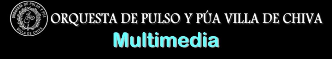 Orquesta Pulso y Púa Villa de Chiva