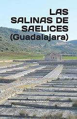 LAS SALINAS DE SAELICES