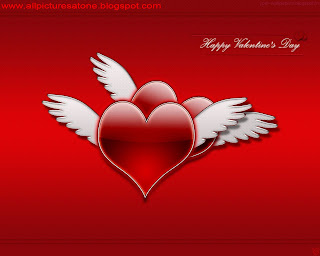 ALL IMAGES OF ROSE DAY WALLPAPER AND IMAGES FREE DOWNLOAD