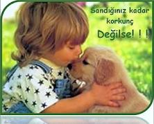 Evcil Hayvanlar - Evde Beslenen Hayvanların Bakımı