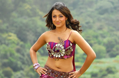 Actress Trisha Navel Show Photos