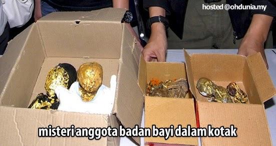 Misteri Anggota Badan Bayi Dalam Bungkusan Kotak Terbongkar !..