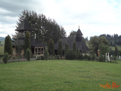 Toplita Manastirea Doamnei