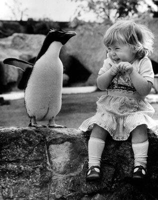 Abraça o que te faz sorrir. Sonha que é de graça....