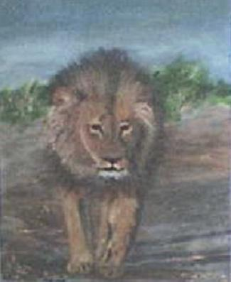 King of the Jungle (2008) Donated