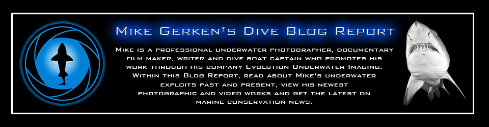 Mike Gerken's Dive Blog Report