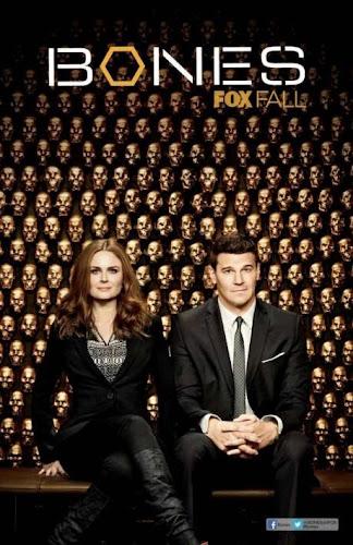 Bones Temporada 9 (HDTV Ingles Subtitulada) (2013)