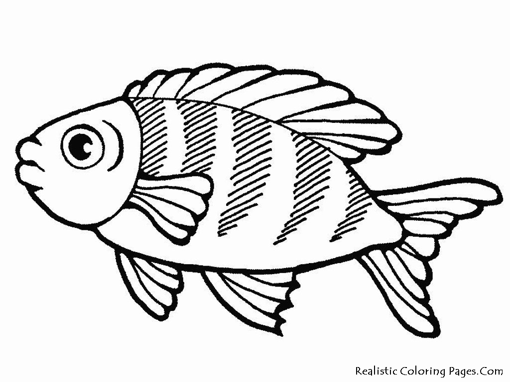 Free fishes in fishes in sea coloring pages for Printable fish coloring pages