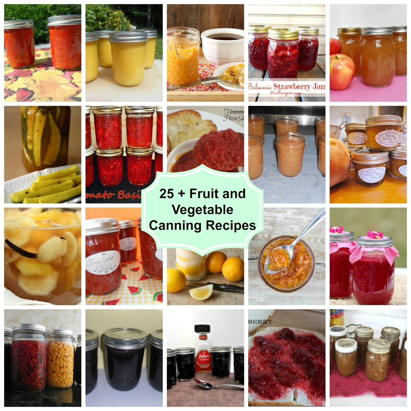 25 fruit and vegetable canning recipes hezzi ds books and cooks 25 fruit and vegetable canning recipes forumfinder Gallery