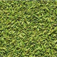 Variyali / Sounf / Fennel Seeds (Lakhnavi), 100gm