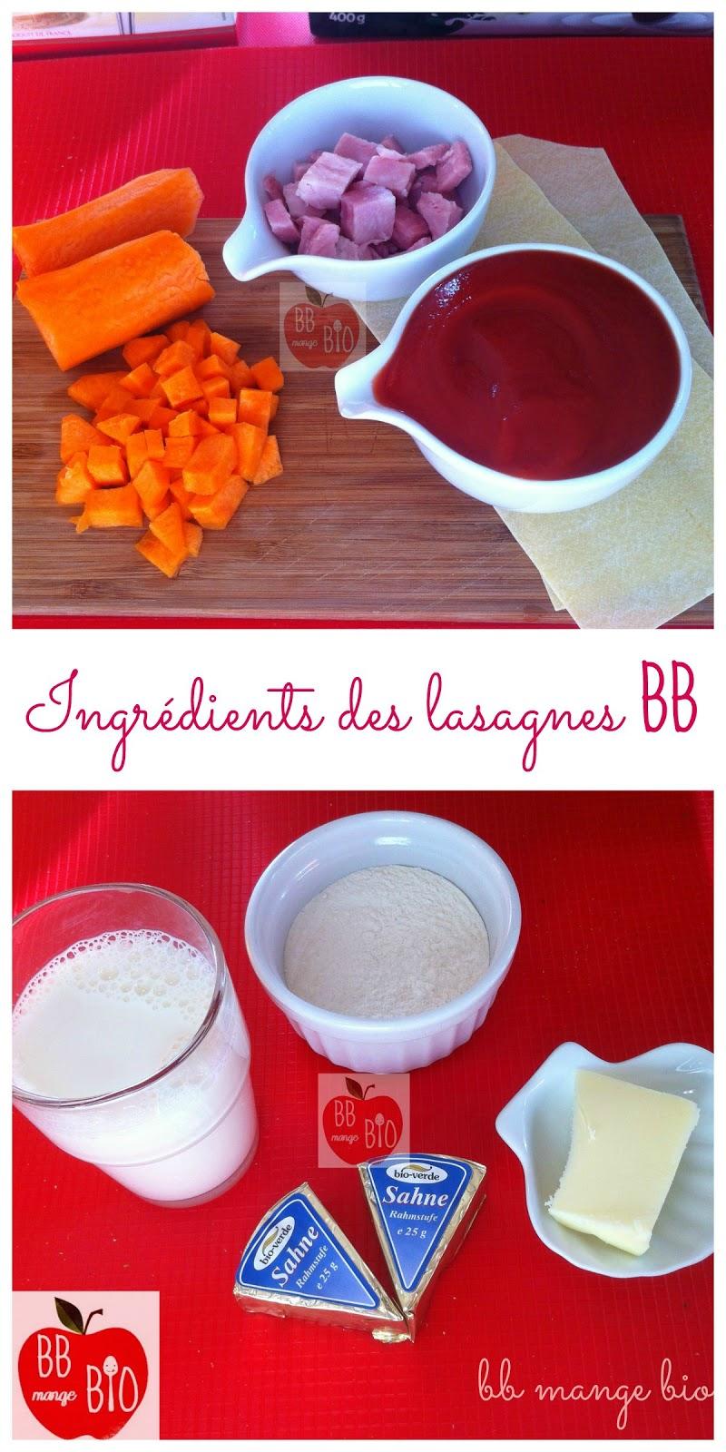 Les ingrédients pour préparer 2 à 3 portions des premières lasagnes de bébé