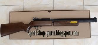 senapan angin 2