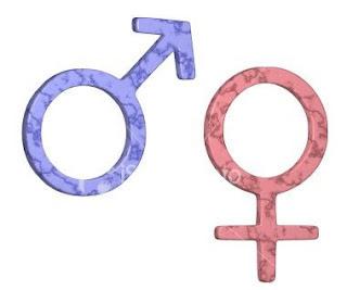 Antara Pria dan Wanita
