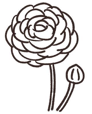 ラナンキュラス(花) モノクロ線画