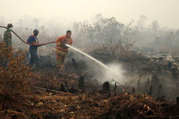 bencana asap di sumatra dan kalimantan
