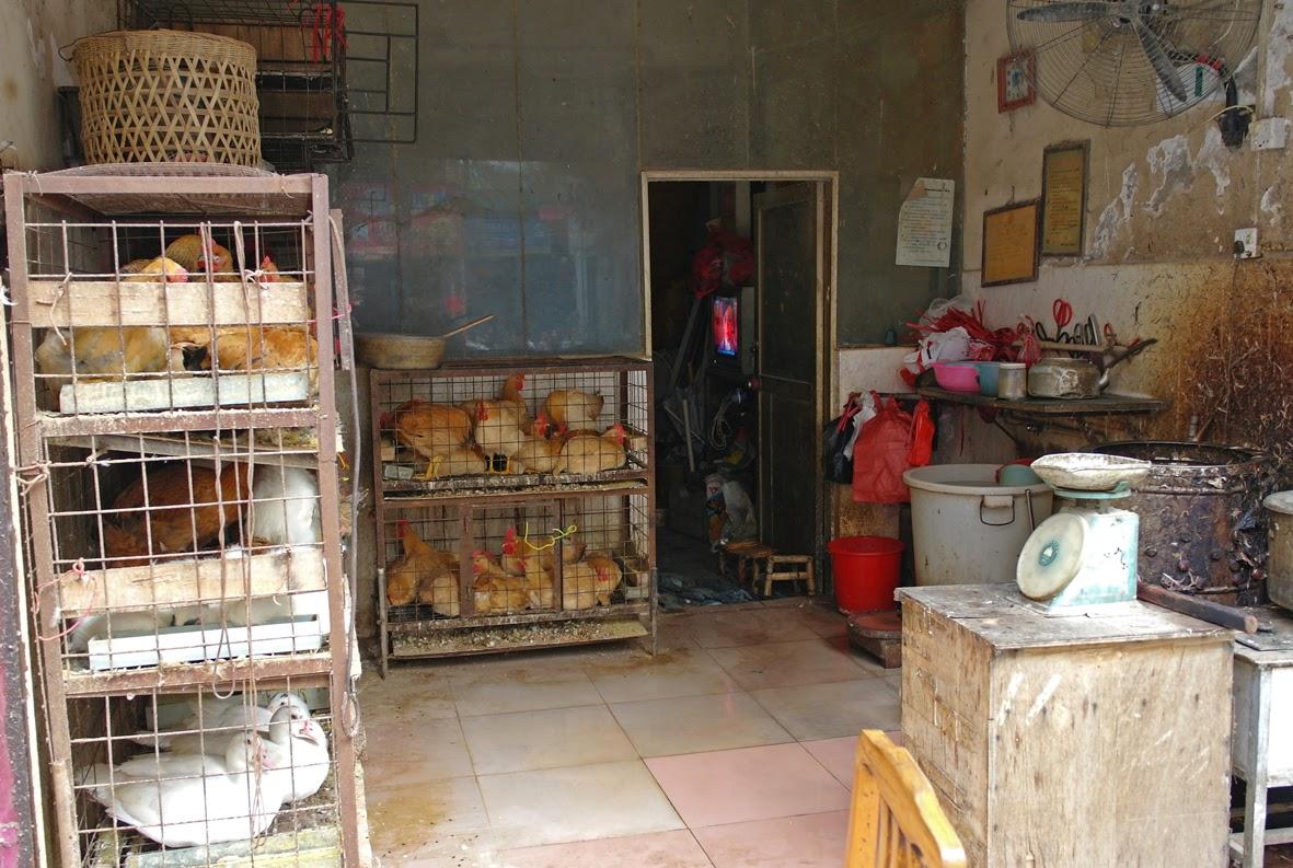 miejscowa garkuchnia