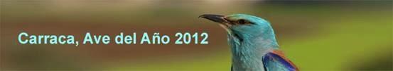 Carraca Ave del Año 2012 SEO-Sevilla