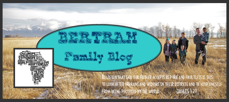 Bertram Family Blog